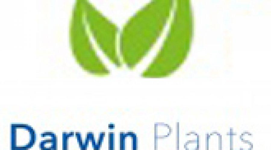Darwin Plants