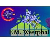 Clematis Westphal